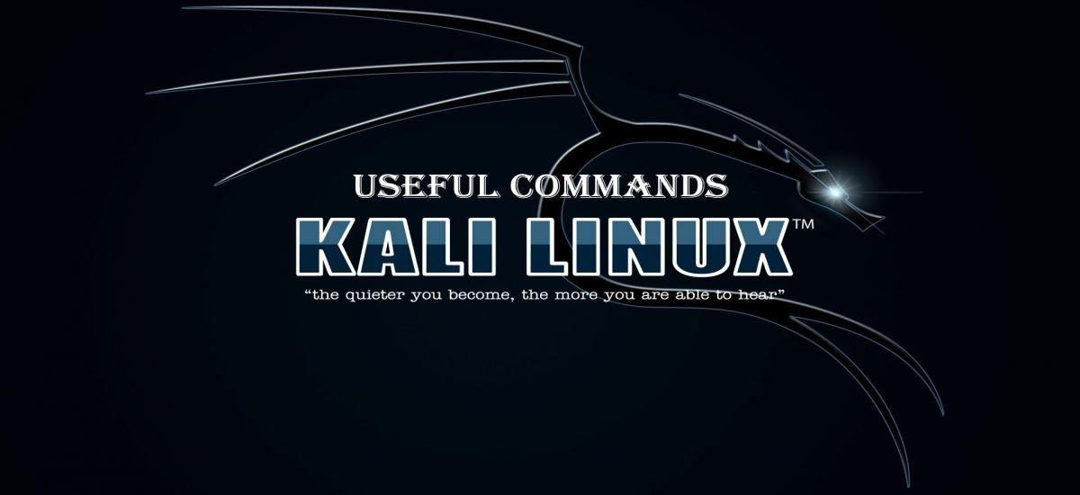 Top 20 Basic Kali Linux Commands - Yeah Hub