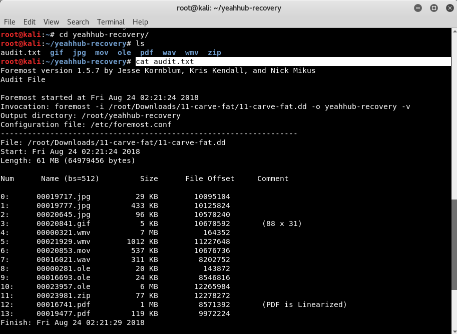 File Recovery using Foremost [Kali Linux] - Yeah Hub